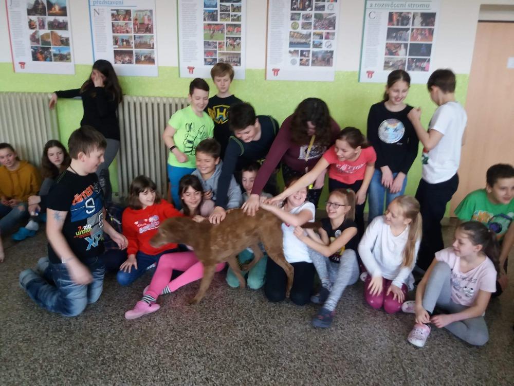 Cvičení policejních psů na naší škole